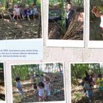 Album de fotos da professora Tanymara Paganelli mostra atividades de pesquisa das crianças