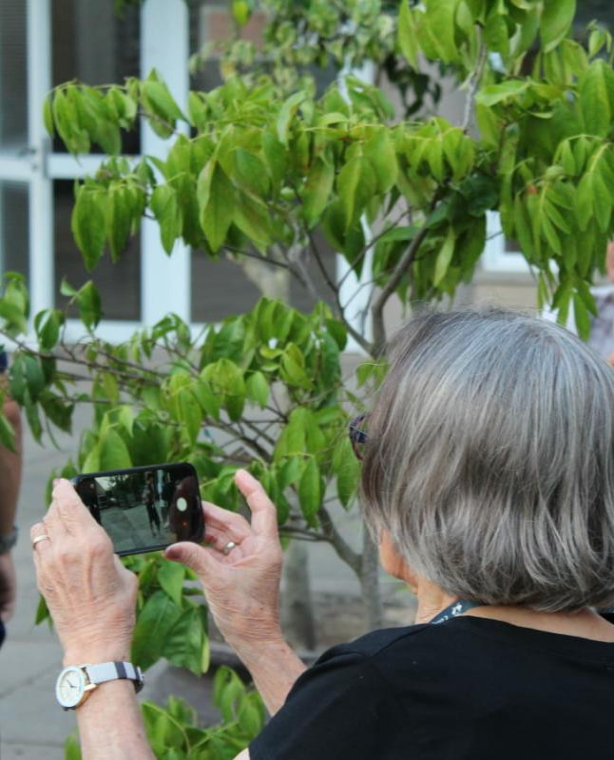 Educação de Jovens e Adultos: alunos registram em fotos suas impressões sobre o papel da escola